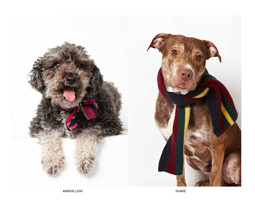 Maximillion and Shane showcase the winter accessories line.