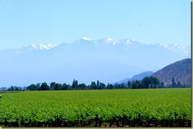 DSC_0176 - View Andes and Wine Yards 03.11.2012 16-11-33