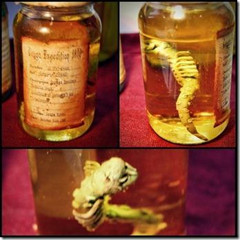 andy skinner specimen jars page 2