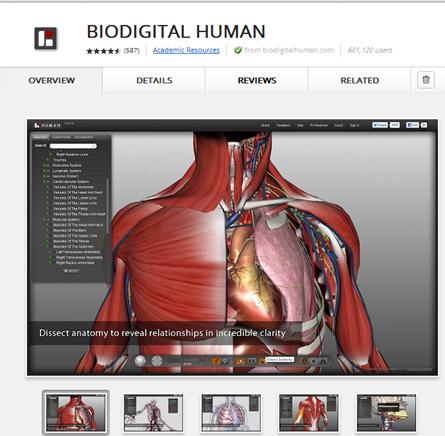 เรียนรู้ระบบอวัยวะในร่างกาย