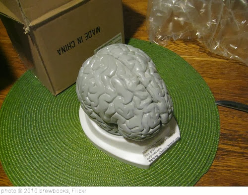 'Unpacking My Brain' photo (c) 2010, brewbooks - license: http://creativecommons.org/licenses/by-sa/2.0/