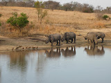South Africa - 483.jpg