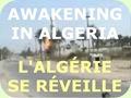 Awakening in Algeria..L'Algérie se Réveille
