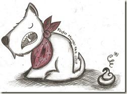 cachorro coco