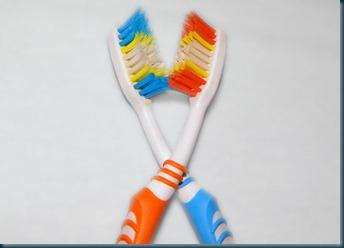 escovas
