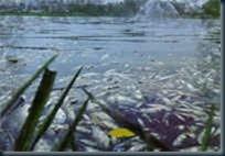 contaminação_rios