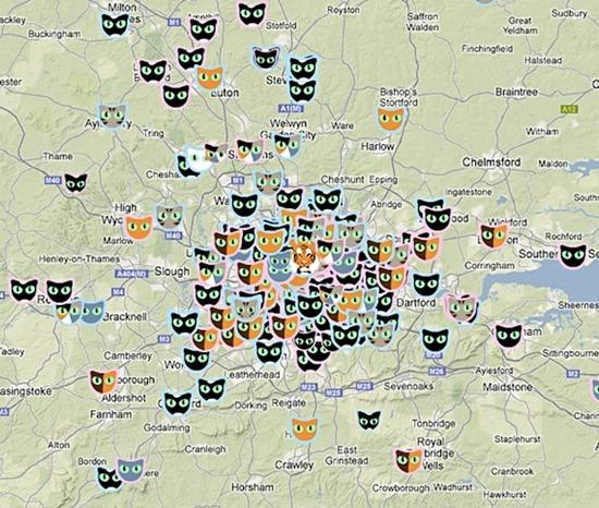 Rede Social Cat Map1