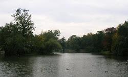 Parque Lazienki