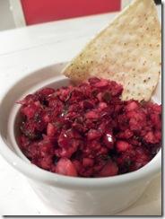 cranberry salsa 01