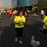Pet Express Doggie Run 2012 Philippines. Jpg (183).JPG