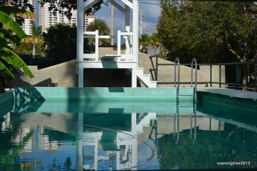 Edison Pool