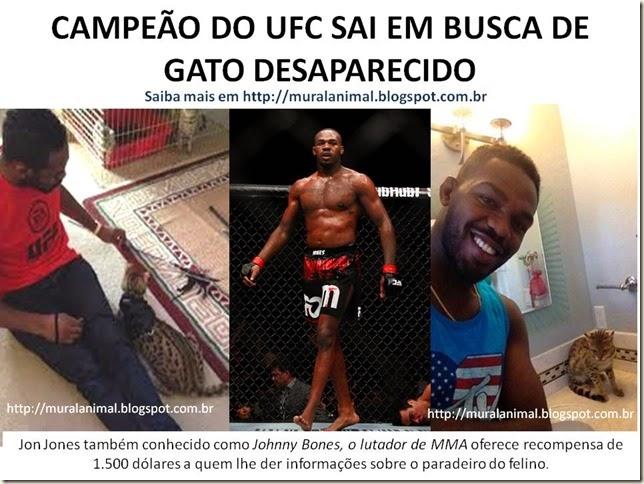 CAMPEÃO DO UFC SAI EM BUSCA DE GATO
