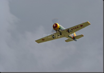 _DSC9109