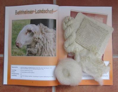 Wollprojekt und Proben