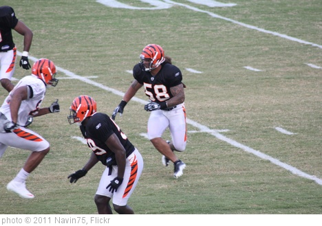 'LB Rey Maualuga' photo (c) 2011, Navin75 - license: http://creativecommons.org/licenses/by-sa/2.0/