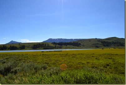 Northern Yellowstone-1