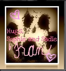 sophie and sadie blog signature