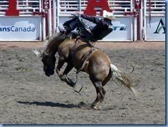 9414 Alberta Calgary - Calgary Stampede 100th Anniversary - Stampede Grandstand - Calgary Stampede Bareback Championship