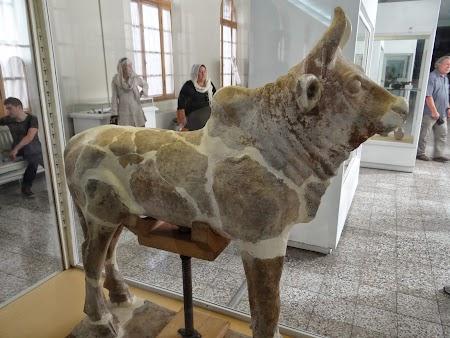 09. Statuie de bivol.JPG