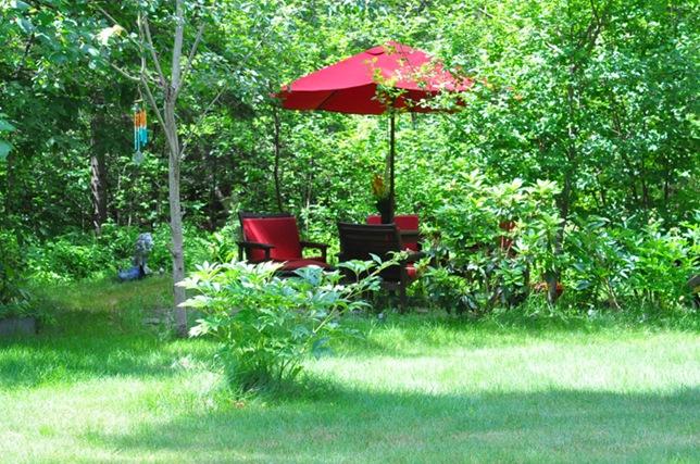garden_backgarden