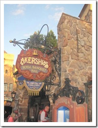 Florida vacation Epcot Germany Akershaus