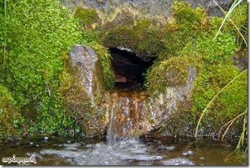 Fuente de San Marcos.