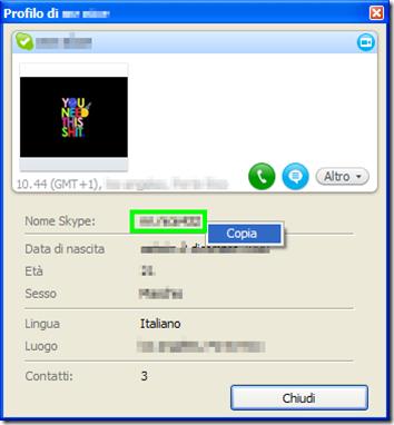Finestra del Profilo Skype di un contatto