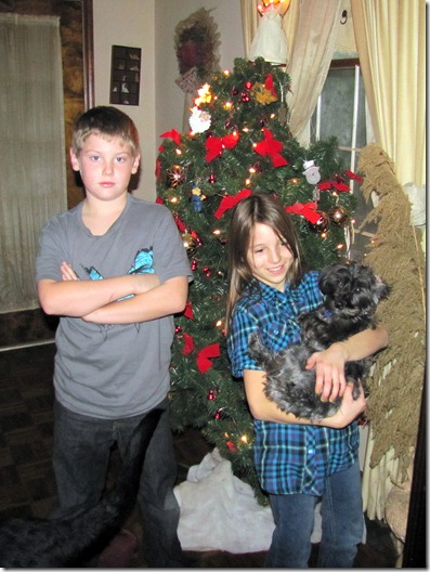 Adam.Nick&SadieXmas2011b