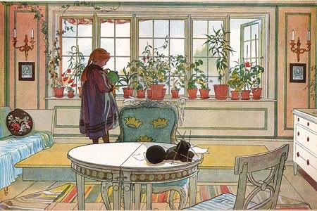 Blomsterfönstret