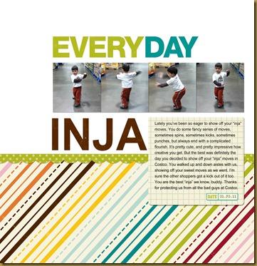 012011 Everyday Inja
