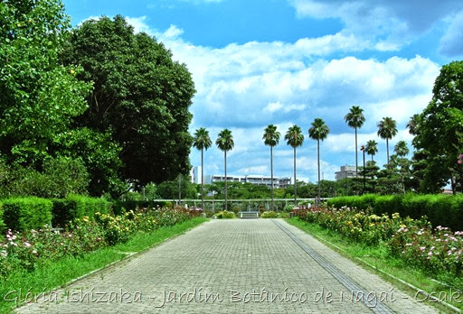 0107- Glória Ishizaka - Jardim Botânico Nagai - Osaka