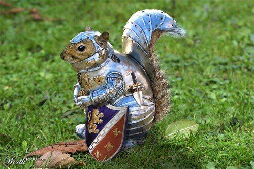 SquirrelArmor