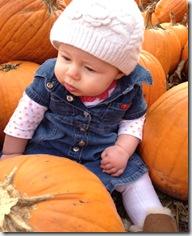 pumpkin 10-27
