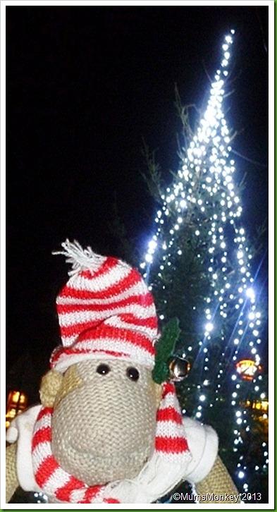 2012 Bilbrook Christmas Tree