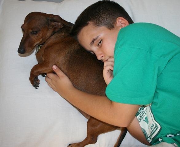Rudi's Cushion 024