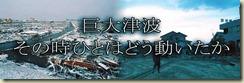 [NHK][纪录片]大海啸 浩劫生死录