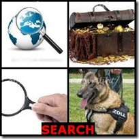 SEARCH- 4 Pics 1 Word Answers 3 Letters