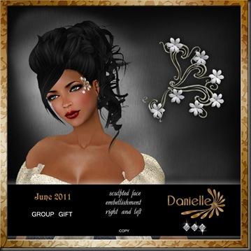 DANIELLE Members Gift 2011_June'