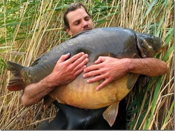 big-fish-fishing-6