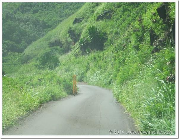 Maui2014SF 028