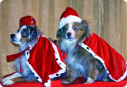 ollie and jewel christmas