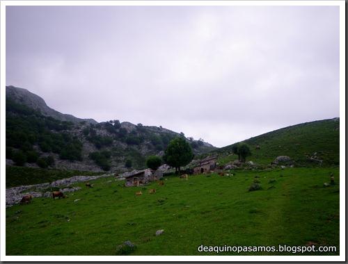 Poncebos-Canal de Trea-Jultayu 1940m-Lagos de Covadonga (Picos de Europa) 5174