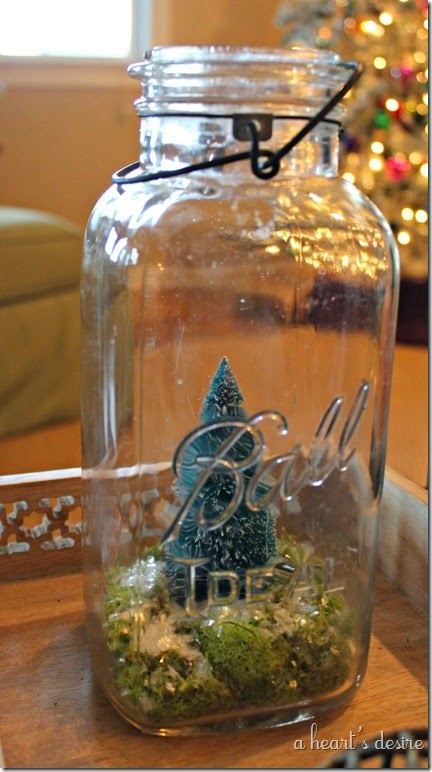 Ball Jar Terrarium
