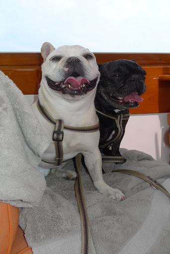 So, what do you say we enjoy the boat trip we're on and we can play explorers later!