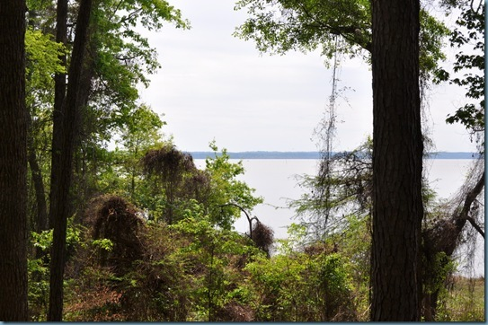 04-13-13 Upper Toledo Bend Reservoir 26