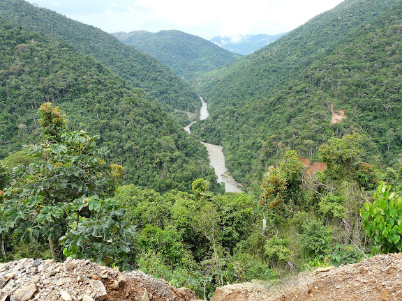 Rio Zongo (Comunidad Santa Rosa), Bolivie. 27 janvier 2008. Photo : J. F. Christensen