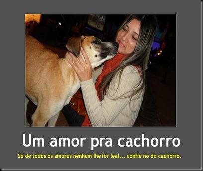 Um amor pra cachorroo
