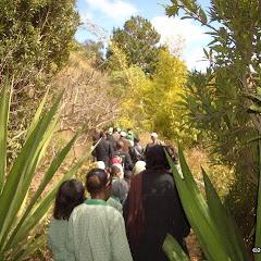 Lemurs Park::IMGP4481