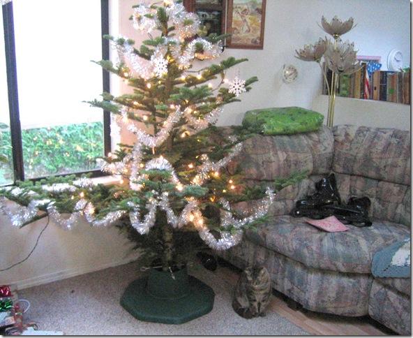 Christmas-tree-11-05