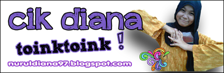 header diana toink copy
